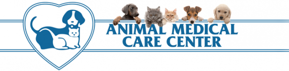 Animal hospital | Veterinarian Center of East Cobb